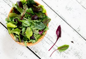 Scintillating Salad Leaves
