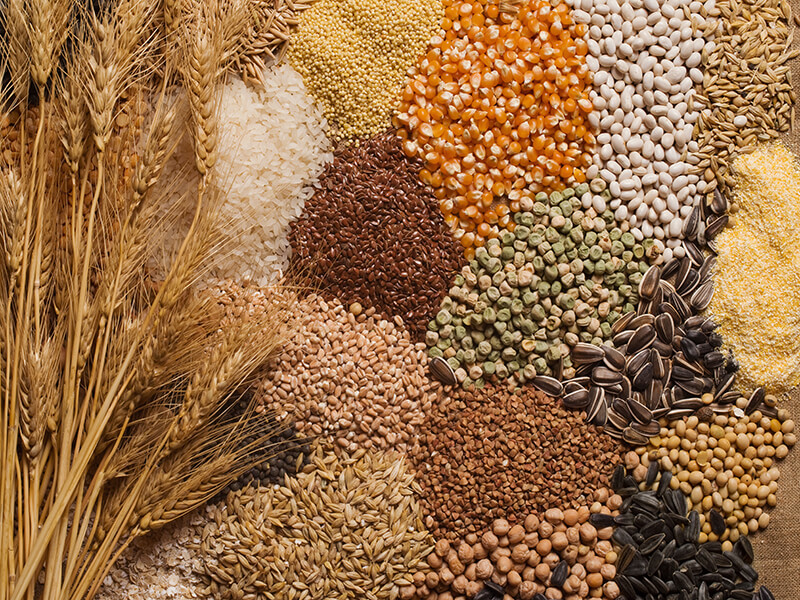 Know Your Grains Well